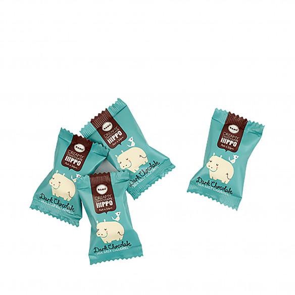 Dreamy Hippos Dark Chocolate Sea Salt Caramel - 60 gram